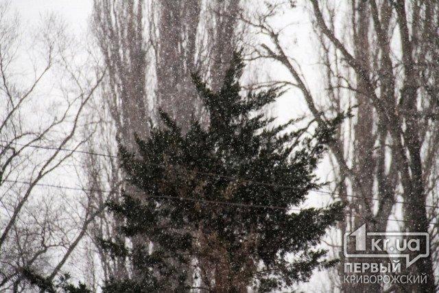 Погода в Кривом Роге 20 февраля