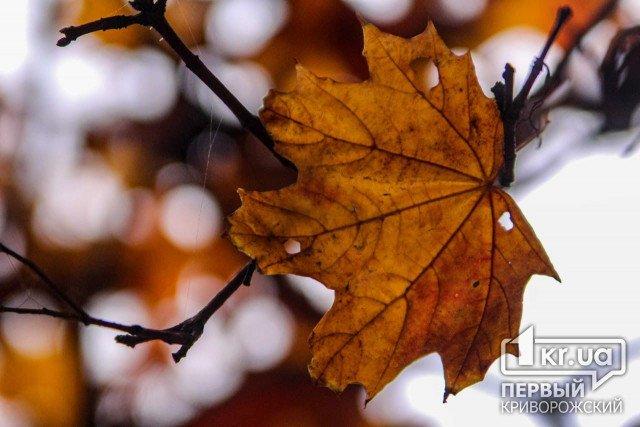 Погода в Кривом Роге 21 октября
